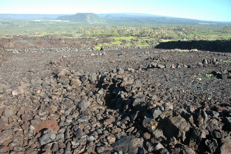 Hawaii-1106
