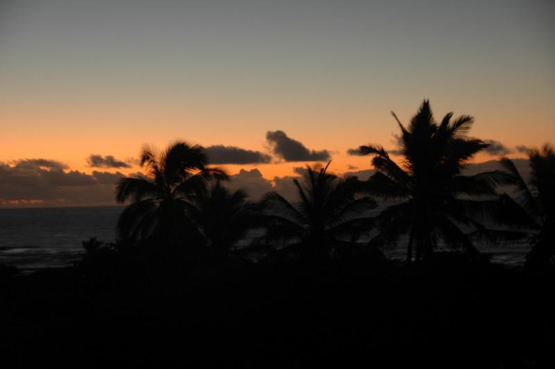 Hawaii-1043