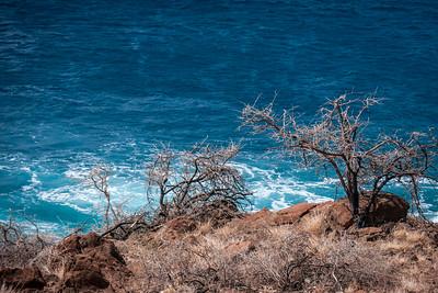 Maalaea Bay, Maui