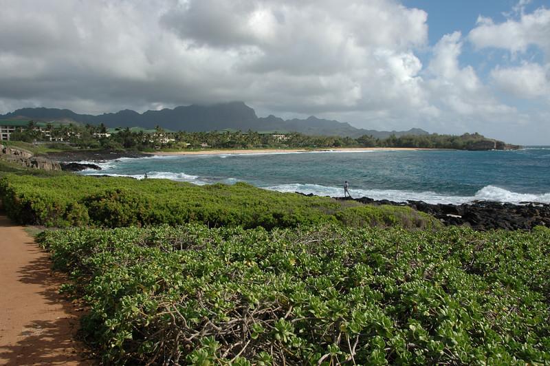 Hawaii-0030