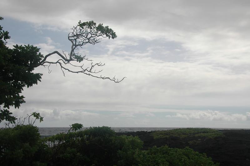 Hawaii-1020