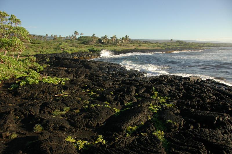 Hawaii-1069
