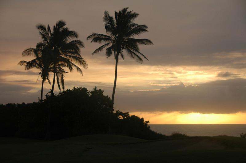 Hawaii-1003