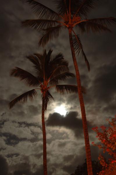 Hawaii-0544