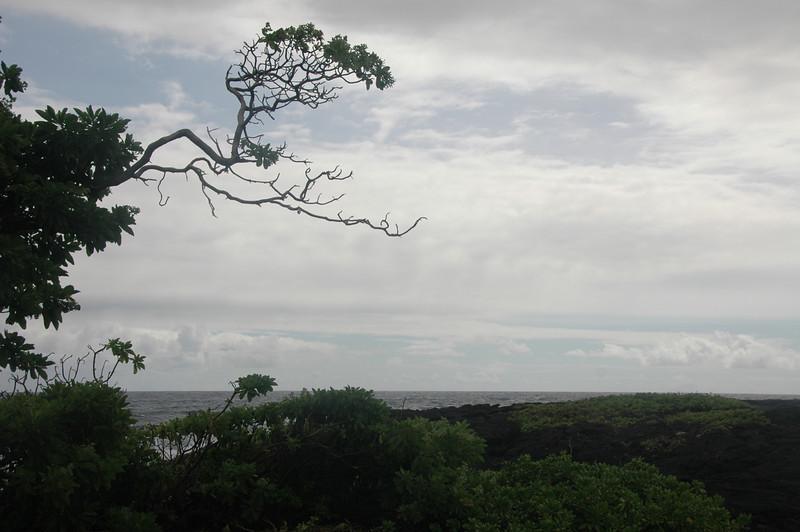 Hawaii-1021