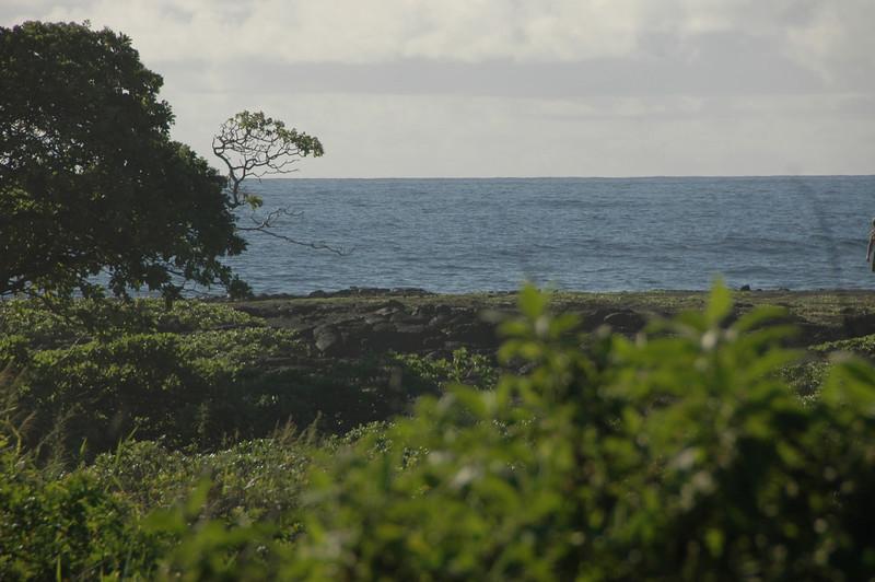 Hawaii-1137