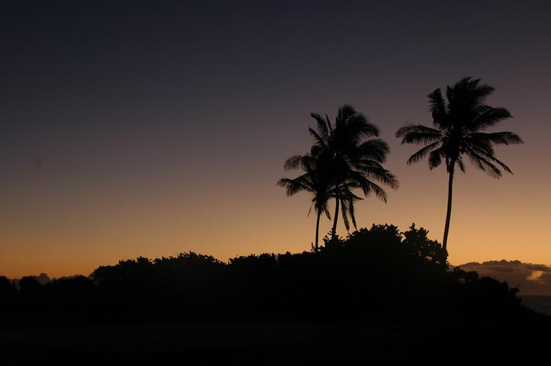 Hawaii-1048