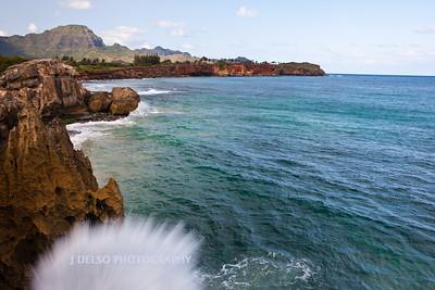 Hawaii-3859