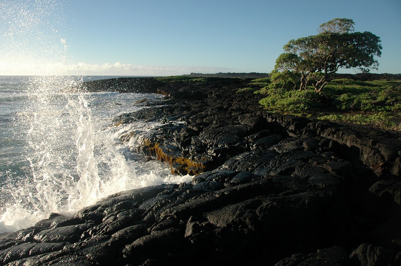 Hawaii-1061