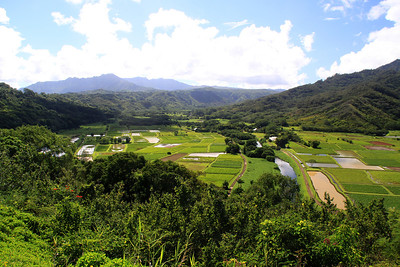 The Hanalei Valley on the North Shore of Kauai.