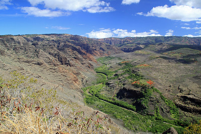 The south end of Waimea Canyon as seen from Waimea Canyon Road.
