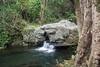 Waihe`e Hawai`i Fish Habitat Partnership project, O`ahu, Hawai`i