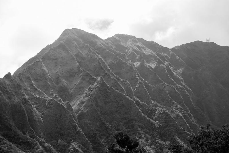 Ko`olau Range from Ho`omaluhia Botanical Garden