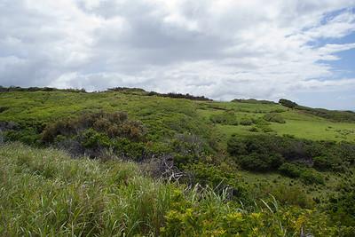Moloka`i Ranchland
