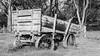 Old cart on Saddle Road farm, Waimea side, Hawaii (Big Island)