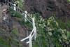 Trail to Makapu`u Lighthouse, O`ahu, Hawai`i