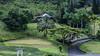 View at Valley of the Temples, O`ahu, Hawai`i