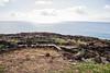 Kupikipikio Point, O`ahu, Hawai`i
