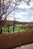 DSR Review, Wahiawa Reservoir Ditch near pumping station, O`ahu, Hawai`i