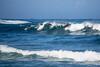 Surfing at Haleiwa, Hawaii