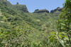 Limahuli Valley, National Tropical Botanica Garden