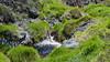 Keawewai Stream