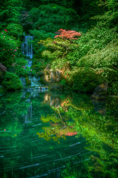 Trembles<br /> Limited Edition #2 of 150<br /> Portland Japanese Garden