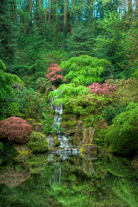 Where Soul Mates Play Limited Edition #2 of 150 Portland Japanese Garden
