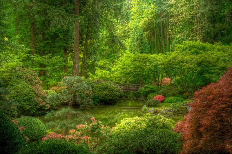 Whispering Sweet Nothings<br /> Portland Japanese Garden<br /> Limited Edition #3 of 150
