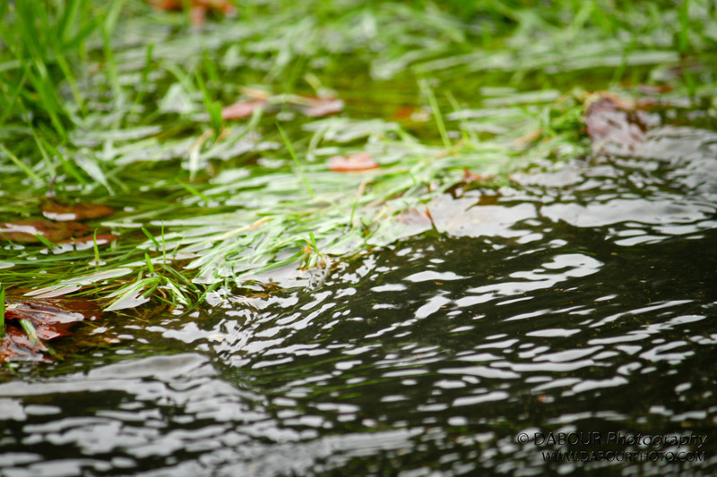 Heavy rain flows into nearby storm drain