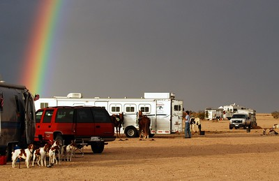 Rainbow Field Trail