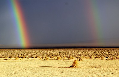 Double Rainbow California City California 2009  11 x 17