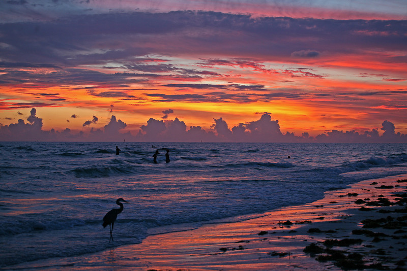 Purple in the sky Tonight, taken at Treasure Island Beach at sunset