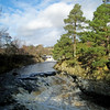 Low Force  Feb 2014