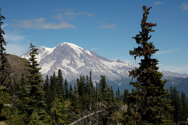 Mt Rainier as seen from the trail.  I'm guessing we were about 1/2 up the path.