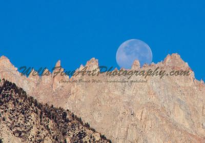 Full moon over palisade close