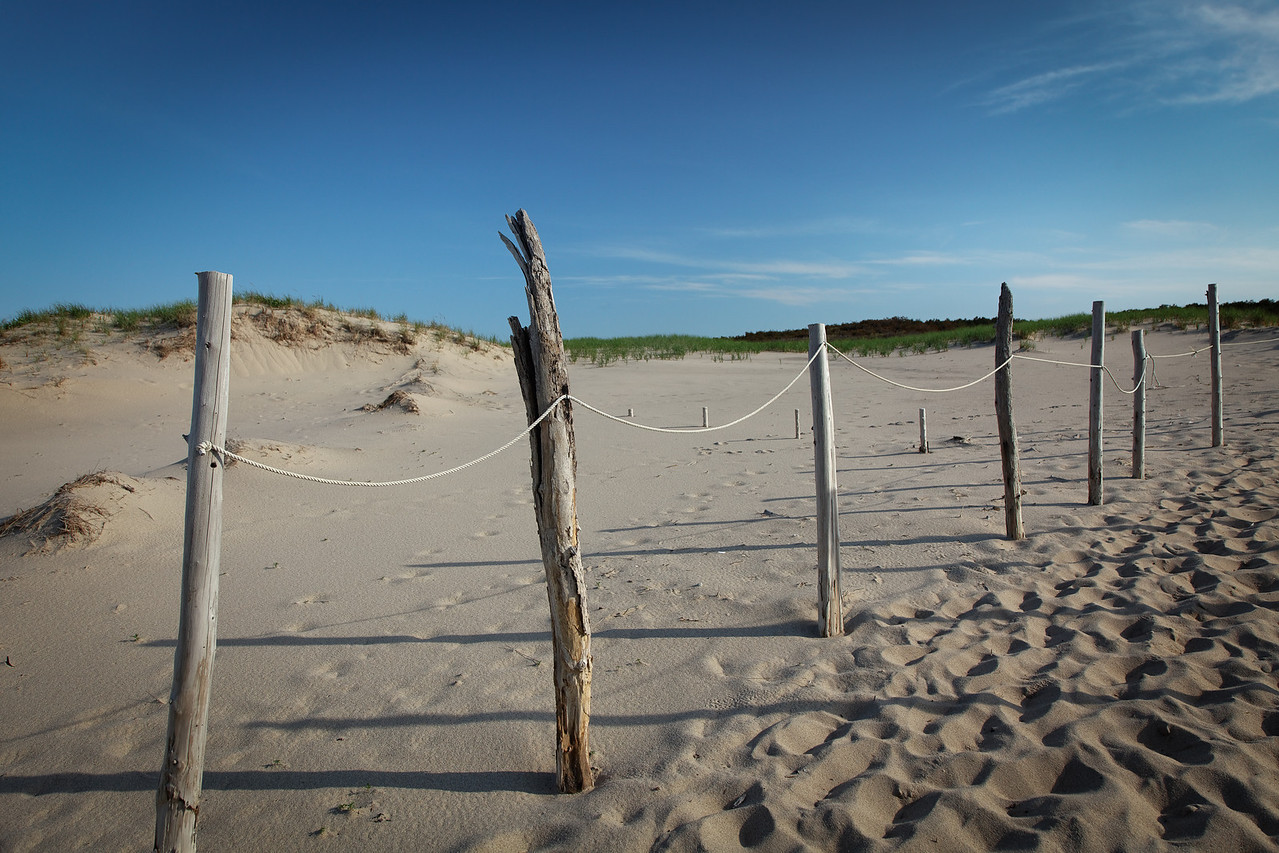 Fence and dunes