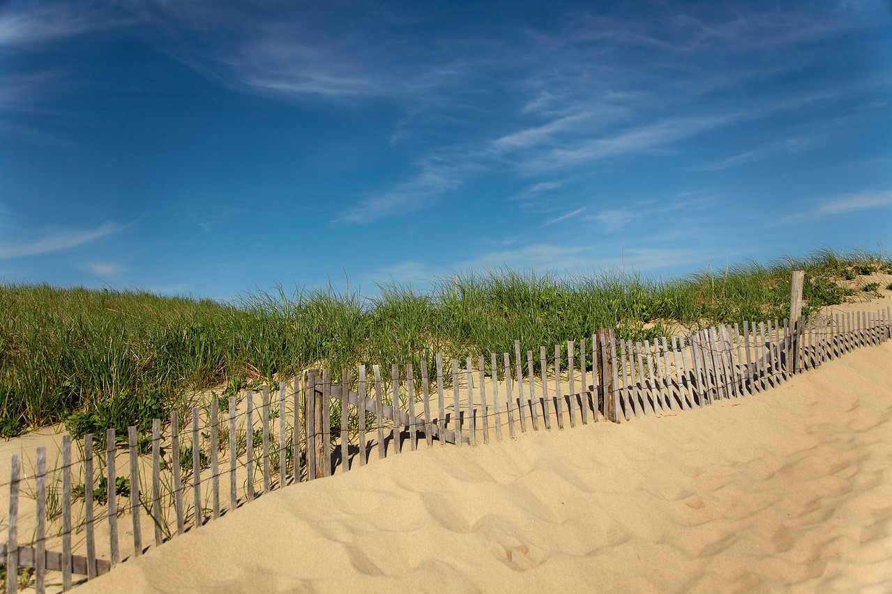 Dunes and fence, Race Point beach