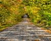 Autumn On Greene Road