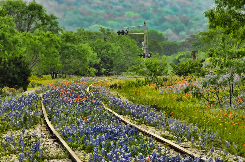 Lining The Tracks