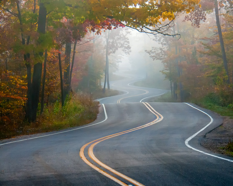 Curvy Road #1