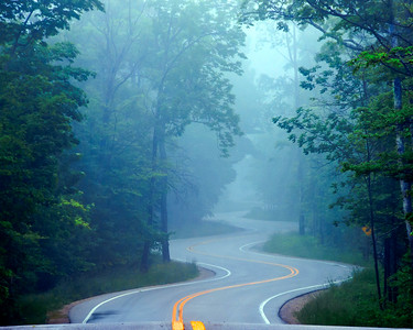 Northport Road In The Fog - Summer