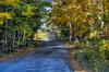 Fall On Isle View Road