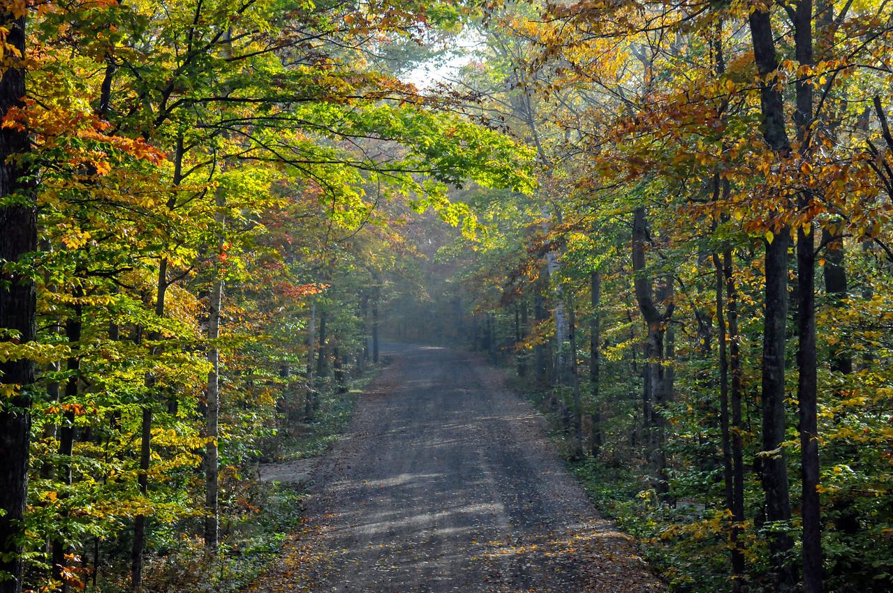 The Gravel Road