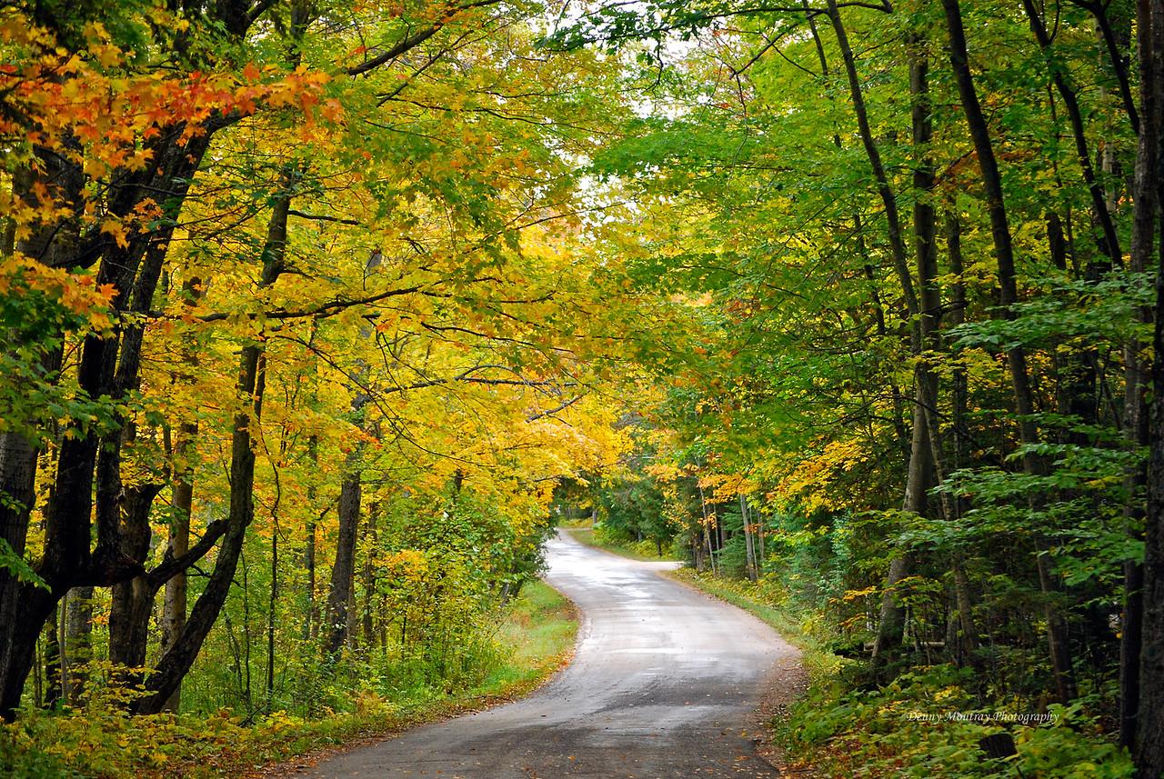 Isle View Road In Fall