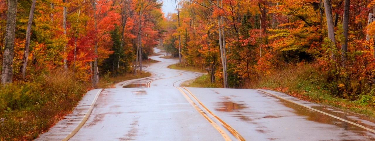 Northport Road After The Rain - 2012