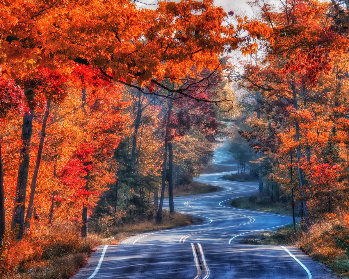 Fall Morning On Northport Road