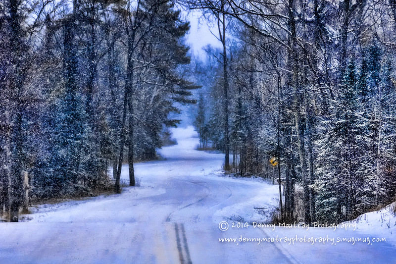 """""""A Road For All Seasons"""""""