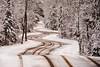 Northport Road In Winter 2016-Edit-Edit