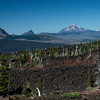 Ghost Trees, (left to right) Mt. Washington, three Finger Jack, Mt. Jefferson, Mt. hood.